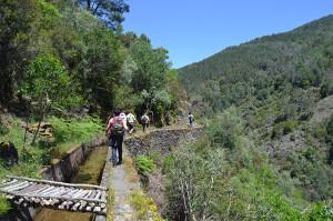 Caminha na Serra da Lousã